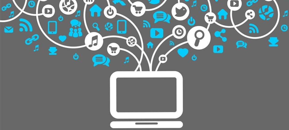 Websites Success | seoagency, localseoservice, localseocompanies, white label seo, local seo expert,